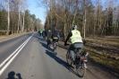 Z palmą na rowerze